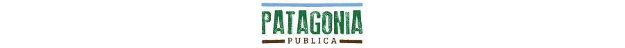 Patagonia Publica